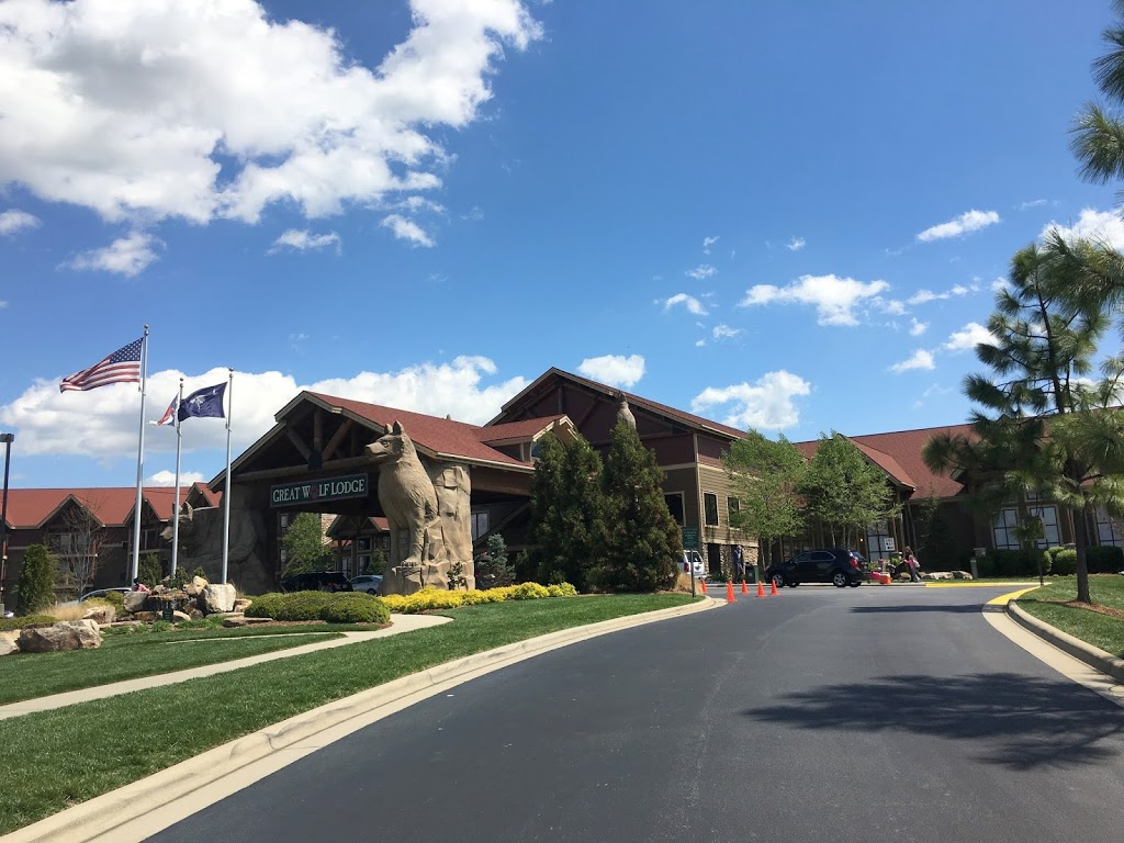 catching up: part two (great wolf lodge)
